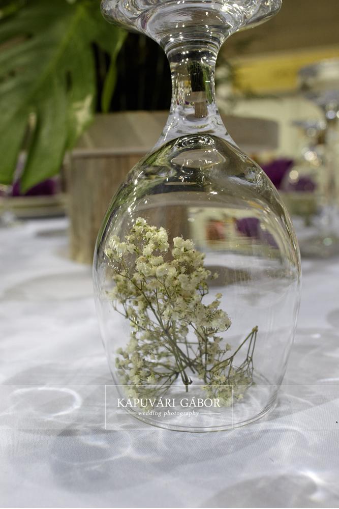 agocsvirag_azeskuvoszervezod_gardenexpo10